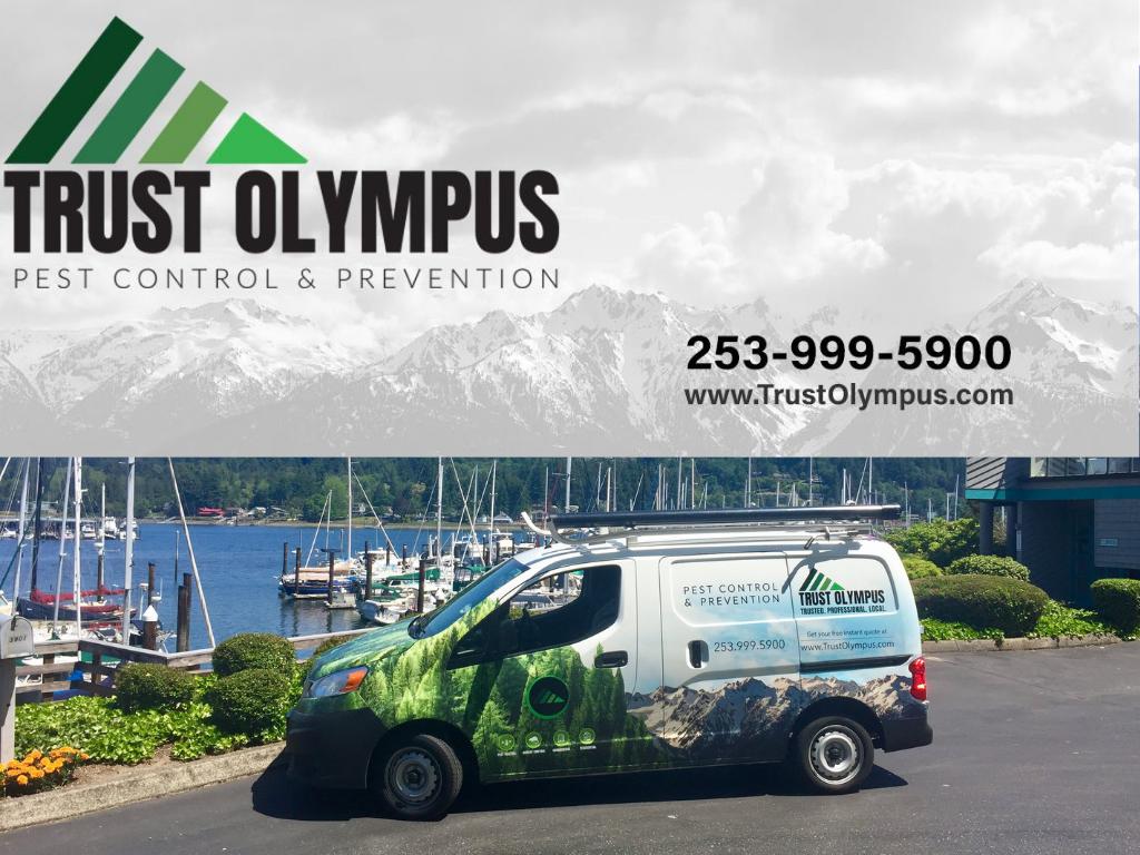 Trust Olympus Logo